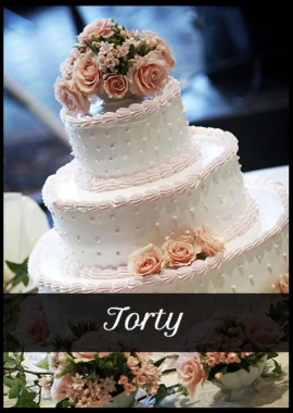 torty 2